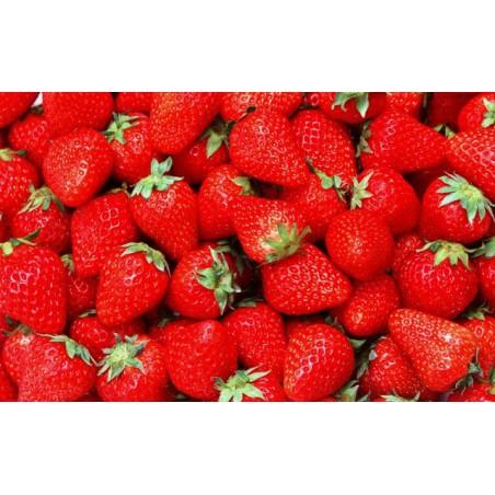 Strawberry 10ml Shake n Vape