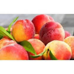 Peach Menthol 100ml ZERO