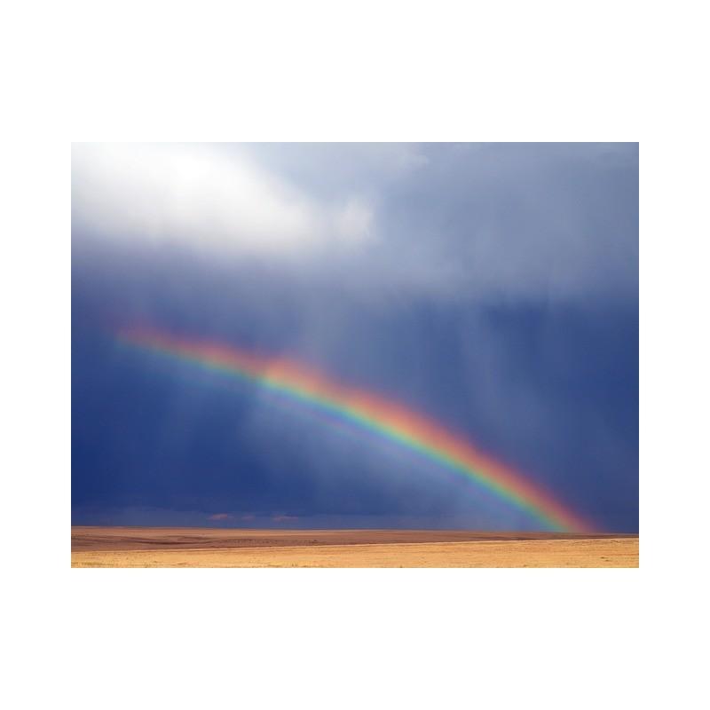 Rainbow Shake n Vape 90ml