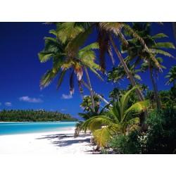 Tropicana Fresh Shake n Vape 30ml