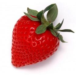 Strawberry Menthol Shake n Vape 30ml