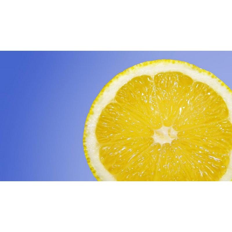 Lemon Menthol Concentrate