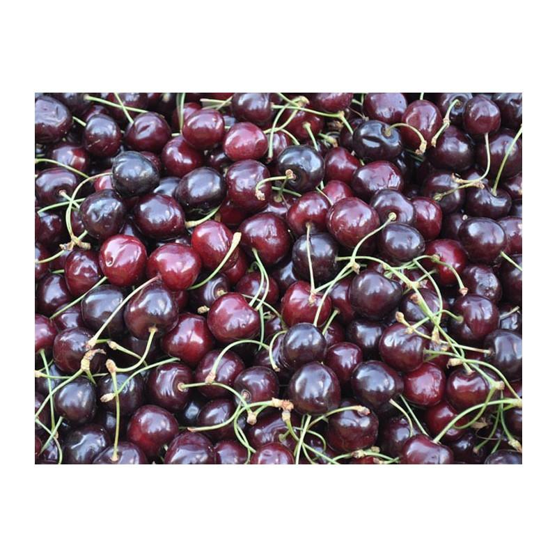 Cherry Cola 10ml ZERO