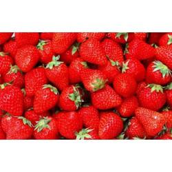 AHL Strawberry 10ml